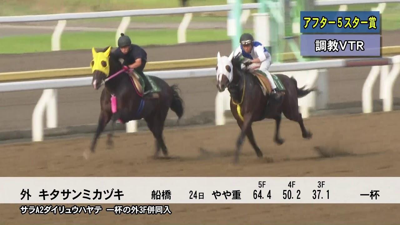 tck東京シティ競馬チャンネル