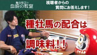 【ダービー卿チャレンジトロフィー2019予想動画】土曜日に万 ...